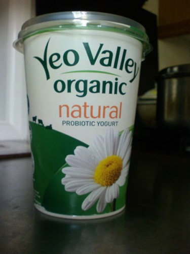 Delicious organic probiotic yogurt